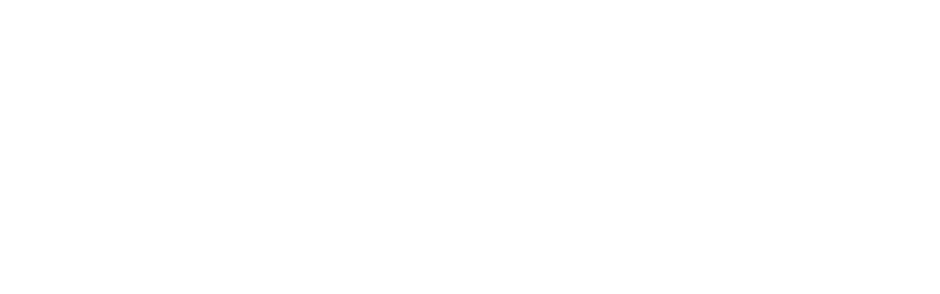Ramones Project